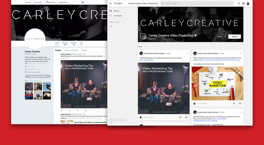 Carley Creative - 3
